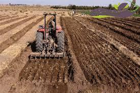 پاورپوینت آماده سازی بستر بذر در زراعت عمومی